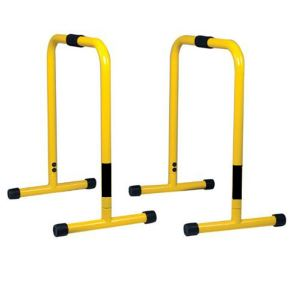 lebert fitness equalizer bars