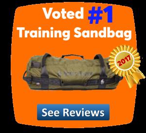 no1 exercise sandbag